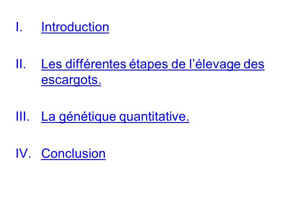 Introduction Les différentes étapes de l'élevage des escargots.