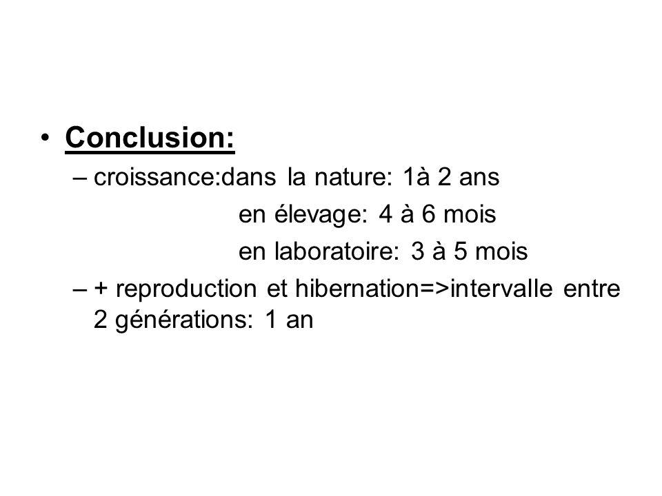 Conclusion: croissance:dans la nature: 1à 2 ans en élevage: 4 à 6 mois