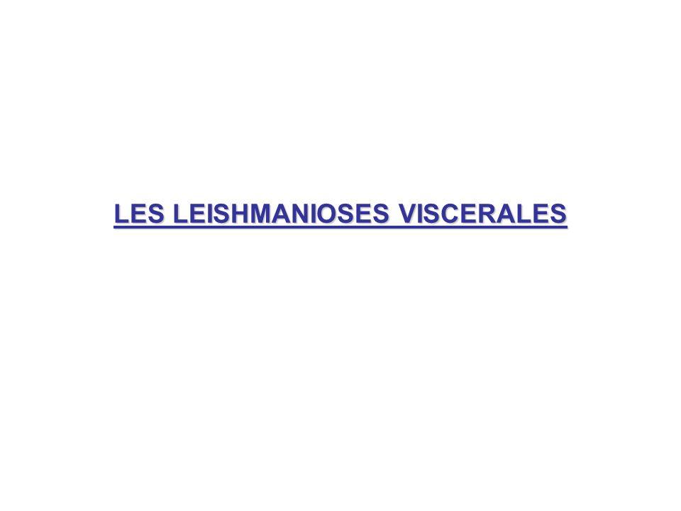 LES LEISHMANIOSES VISCERALES
