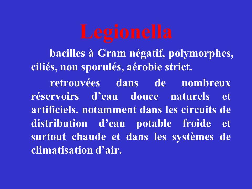 Legionella bacilles à Gram négatif, polymorphes, ciliés, non sporulés, aérobie strict.