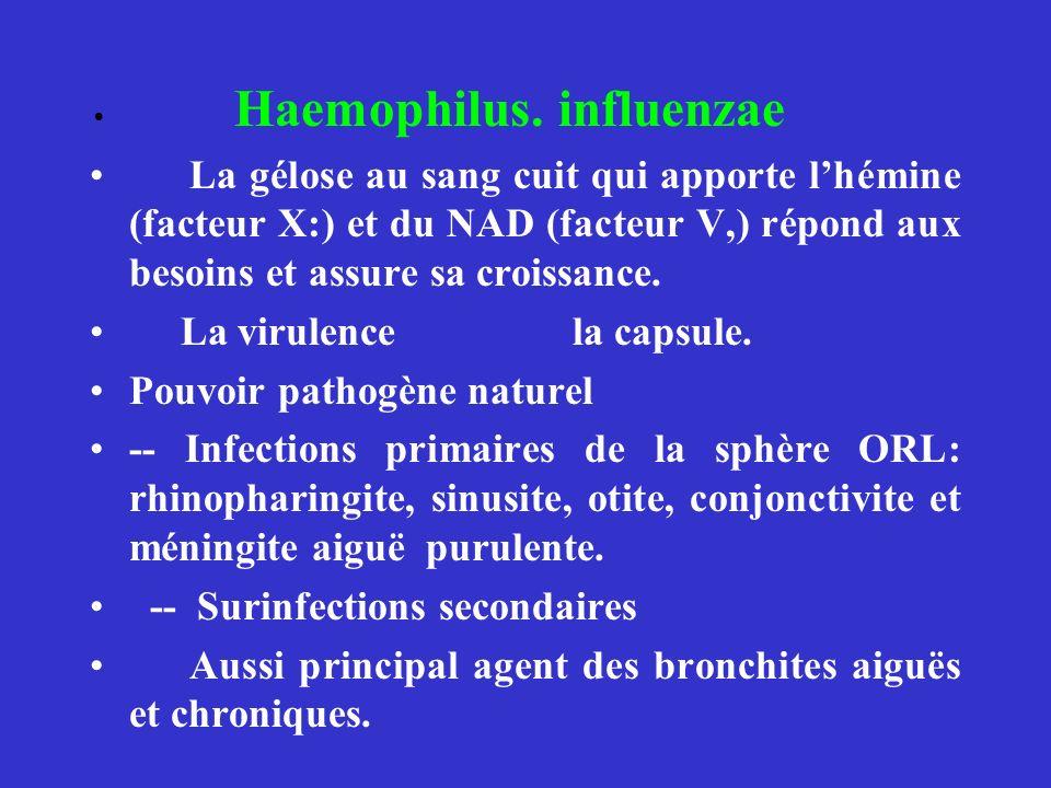La virulence la capsule. Pouvoir pathogène naturel