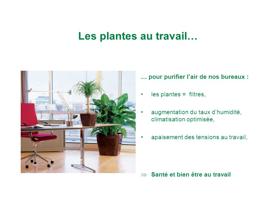 plantes et bien tre sur le lieu de travail nathalie bataillard ppt video online t l charger. Black Bedroom Furniture Sets. Home Design Ideas
