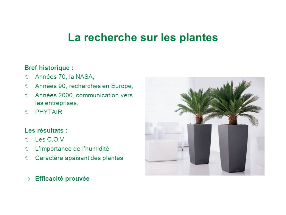 plantes et bien tre sur le lieu de travail nathalie
