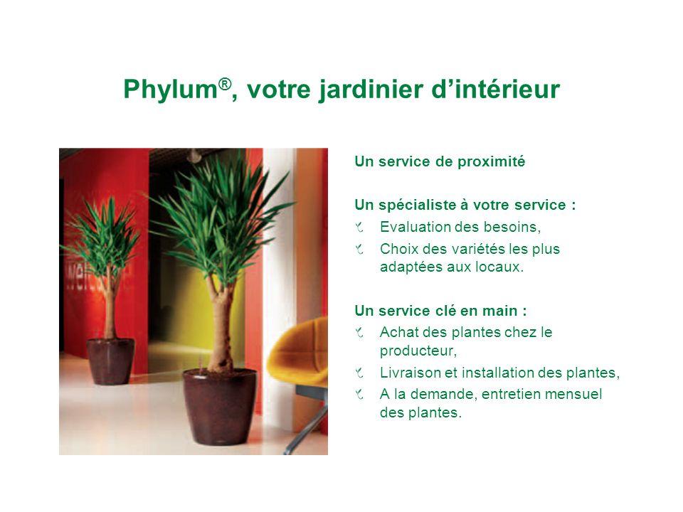Phylum®, votre jardinier d'intérieur