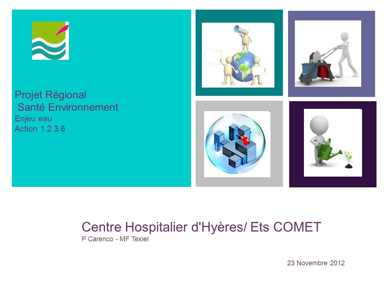 1 Centre Hospitalier d Hyères/ Ets COMET Projet Régional