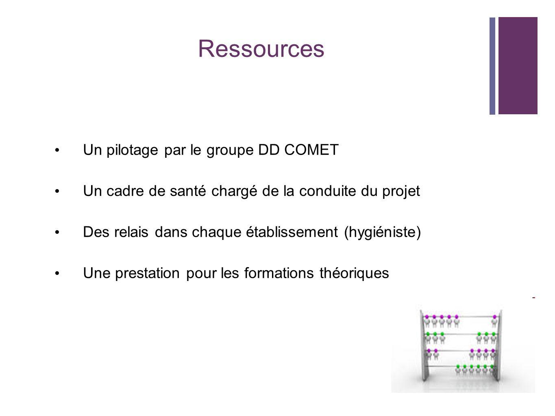 Ressources Un pilotage par le groupe DD COMET