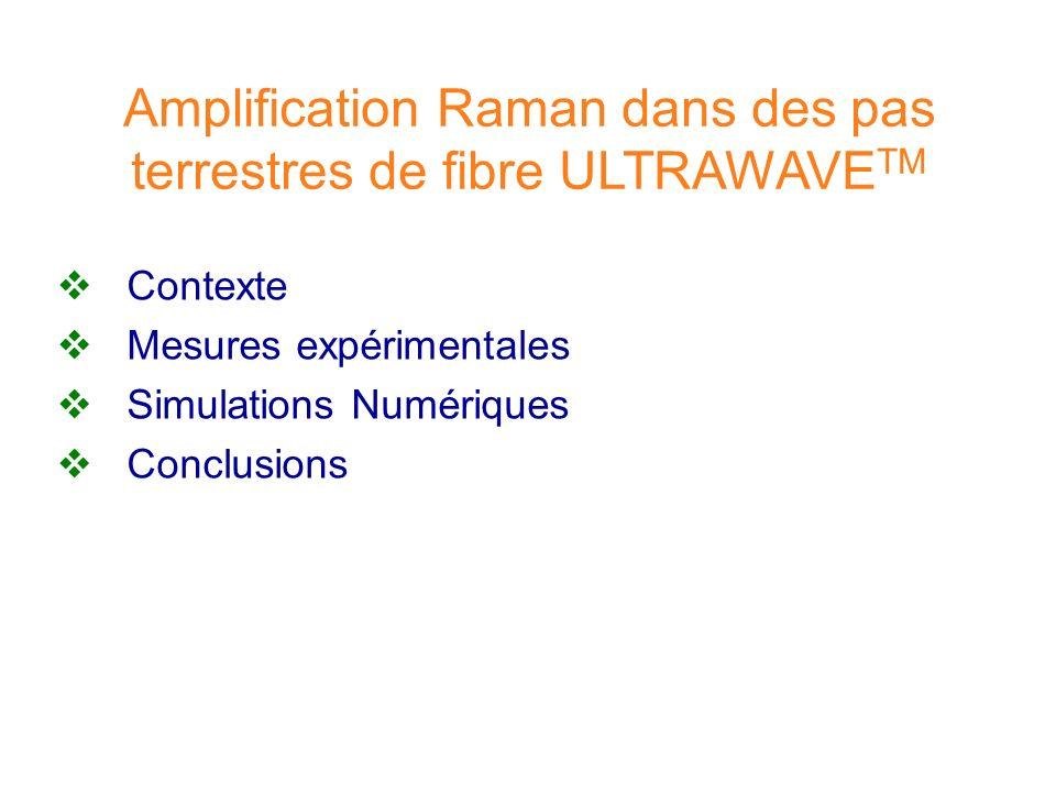 Amplification Raman dans des pas terrestres de fibre ULTRAWAVETM