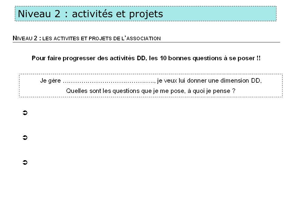 Niveau 2 : activités et projets