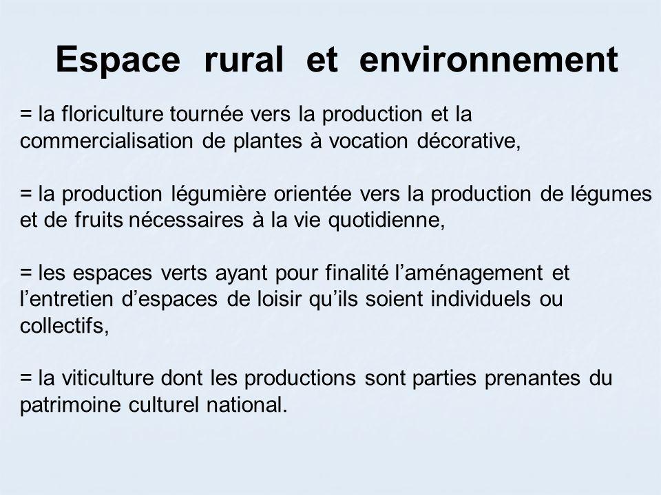Espace rural et environnement
