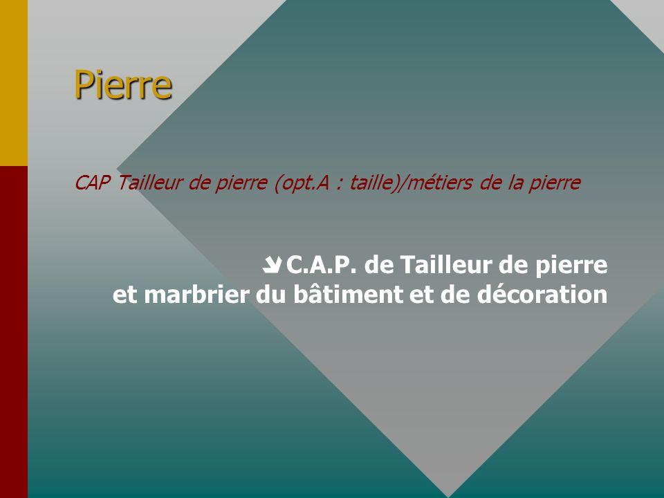 Pierre CAP Tailleur de pierre (opt.A : taille)/métiers de la pierre.