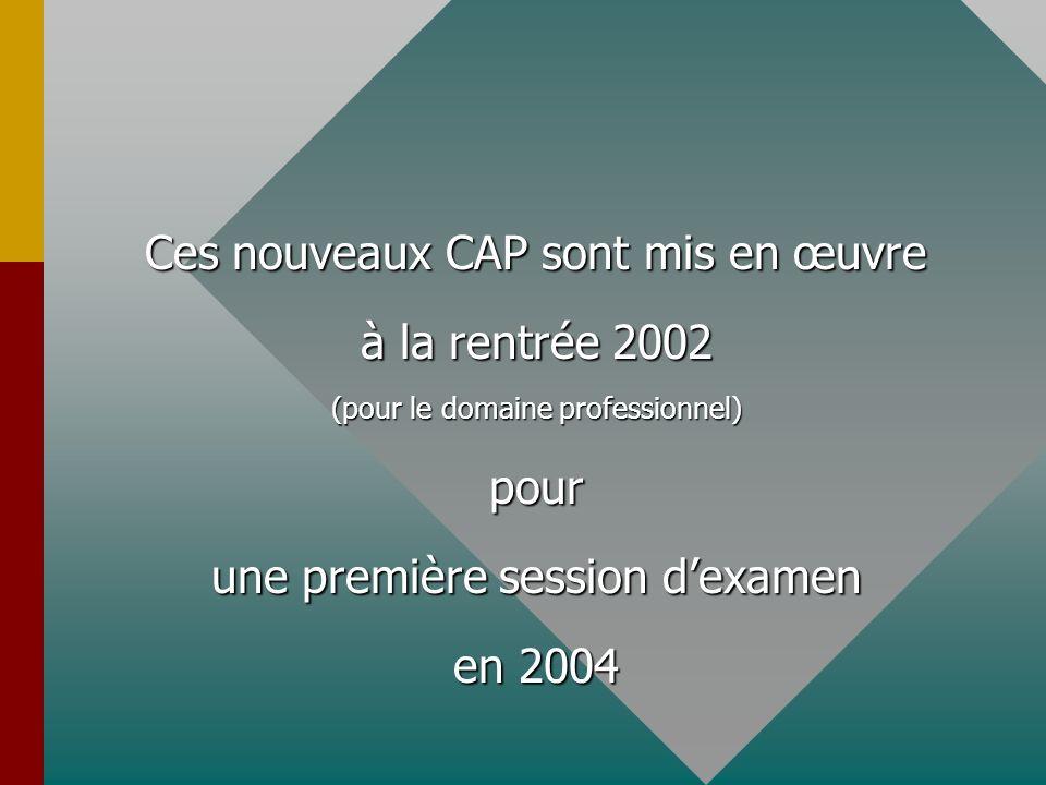 Ces nouveaux CAP sont mis en œuvre à la rentrée 2002