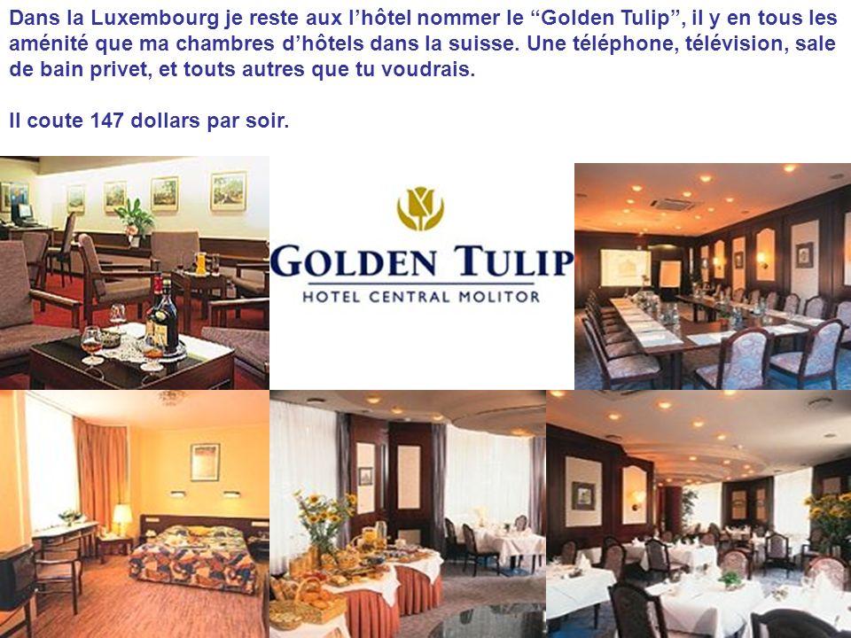 Dans la Luxembourg je reste aux l'hôtel nommer le Golden Tulip , il y en tous les aménité que ma chambres d'hôtels dans la suisse. Une téléphone, télévision, sale de bain privet, et touts autres que tu voudrais.