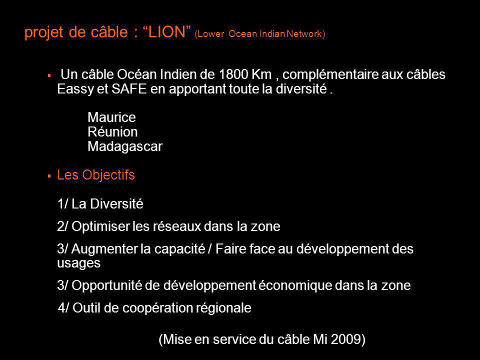 projet de câble : LION (Lower Ocean Indian Network)