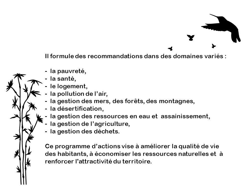 Il formule des recommandations dans des domaines variés :