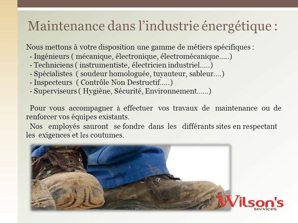 Maintenance dans l'industrie énergétique :