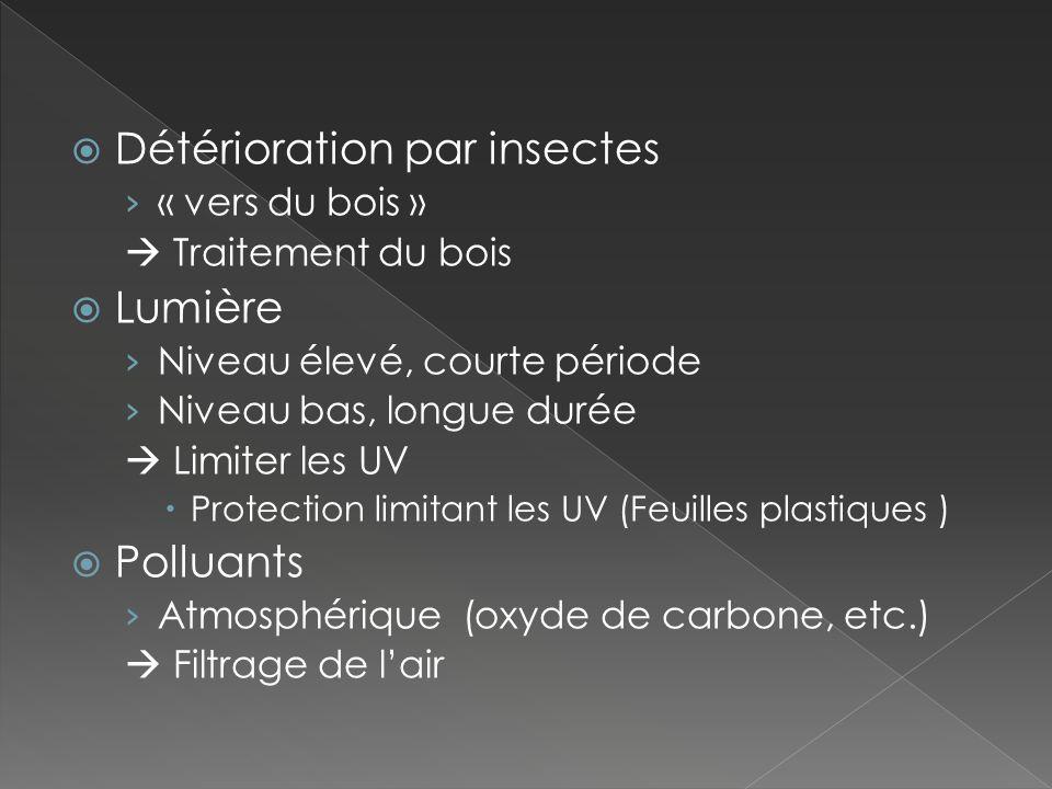 Détérioration par insectes