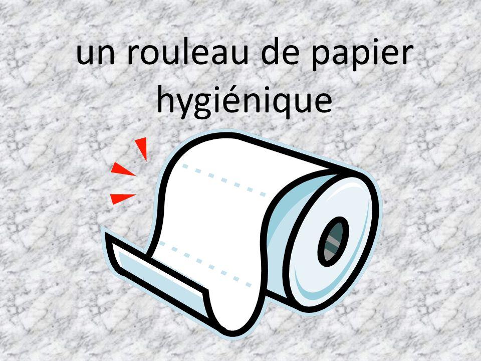 un rouleau de papier hygiénique