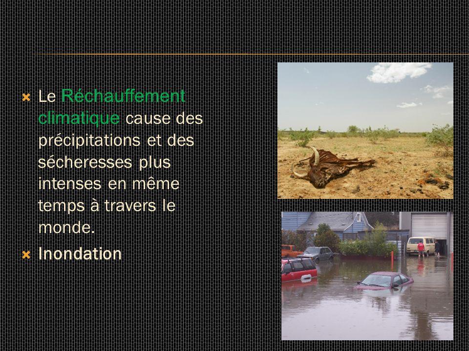 Le Réchauffement climatique cause des précipitations et des sécheresses plus intenses en même temps à travers le monde.