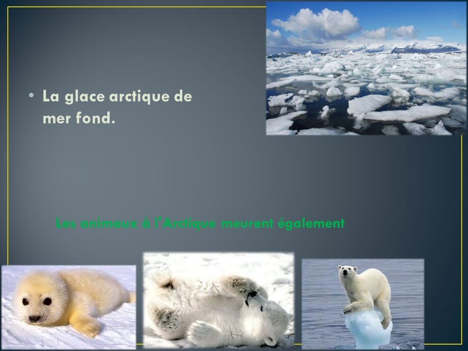 La glace arctique de mer fond.