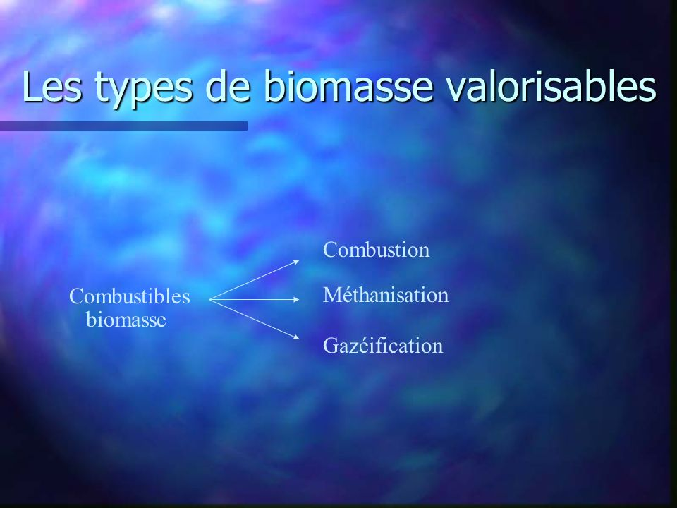 Les types de biomasse valorisables
