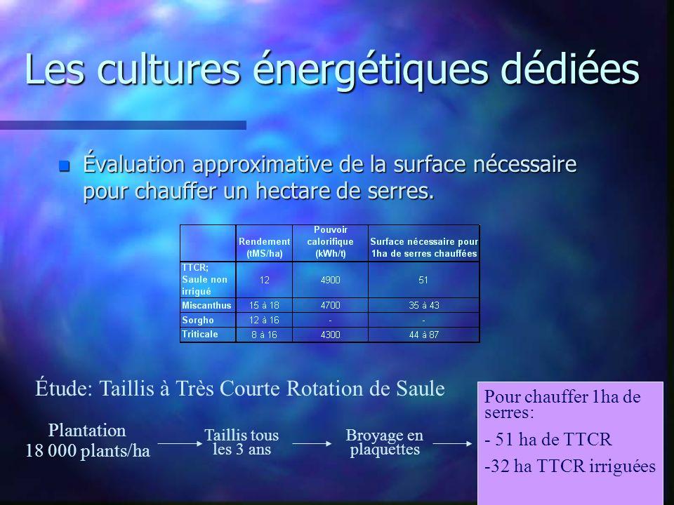 Les cultures énergétiques dédiées