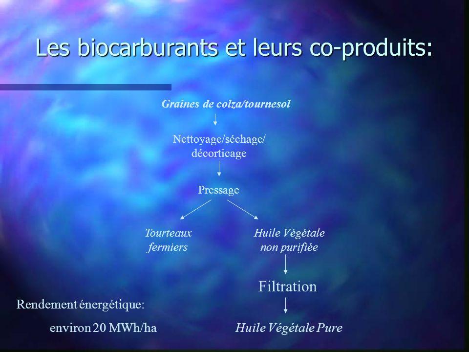 Les biocarburants et leurs co-produits: