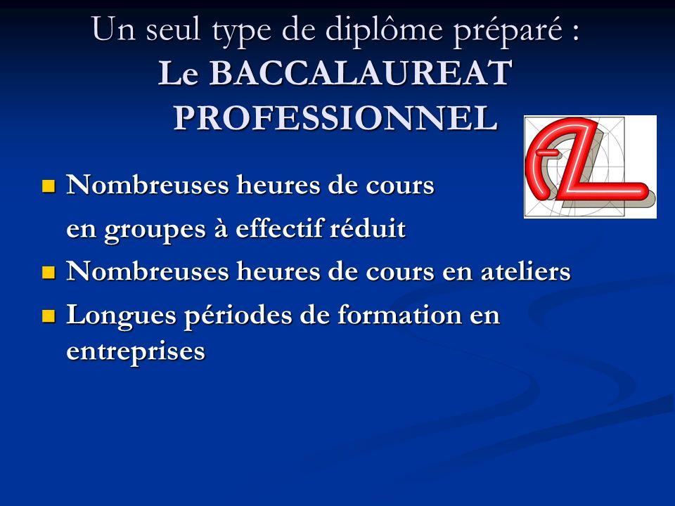 Un seul type de diplôme préparé : Le BACCALAUREAT PROFESSIONNEL