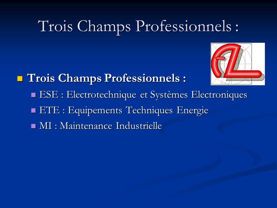 Trois Champs Professionnels :