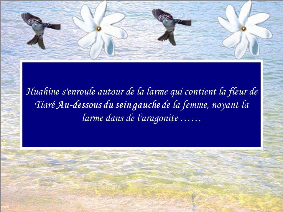 Huahine s enroule autour de la larme qui contient la fleur de Tiaré Au-dessous du sein gauche de la femme, noyant la larme dans de l aragonite ……