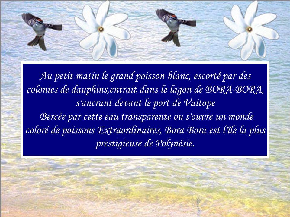 Au petit matin le grand poisson blanc, escorté par des colonies de dauphins,entrait dans le lagon de BORA-BORA, s ancrant devant le port de Vaitope Bercée par cette eau transparente ou s ouvre un monde coloré de poissons Extraordinaires, Bora-Bora est l île la plus prestigieuse de Polynésie.