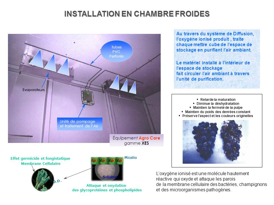 INSTALLATION EN CHAMBRE FROIDES