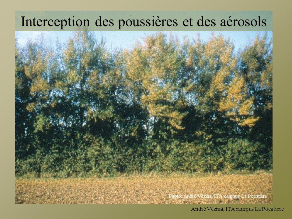 Interception des poussières et des aérosols