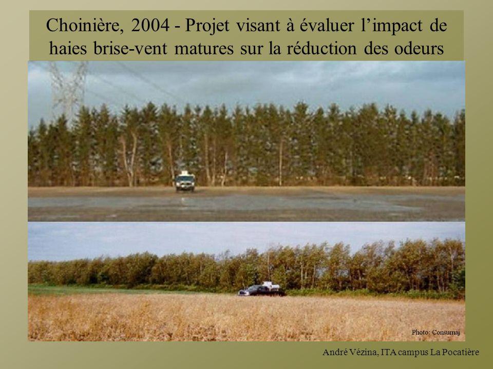 Choinière, 2004 - Projet visant à évaluer l'impact de haies brise-vent matures sur la réduction des odeurs