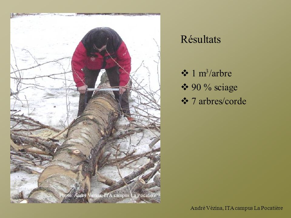 Résultats 1 m3/arbre 90 % sciage 7 arbres/corde