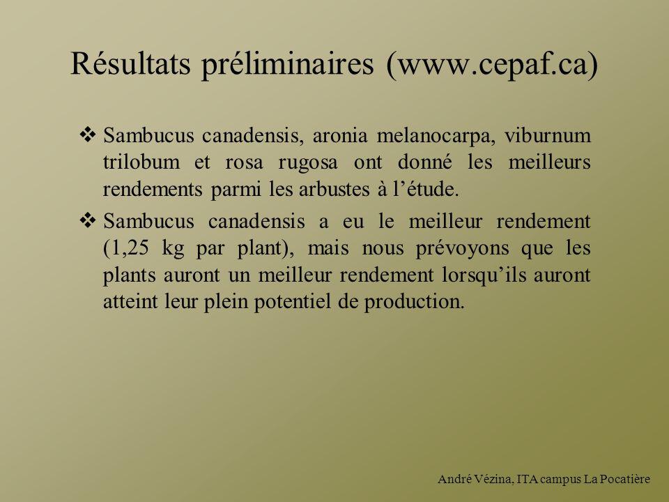 Résultats préliminaires (www.cepaf.ca)