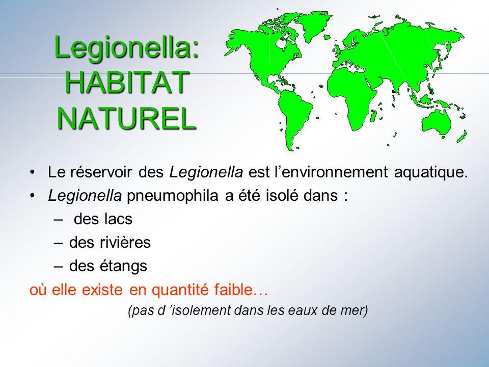 Legionella: HABITAT NATUREL
