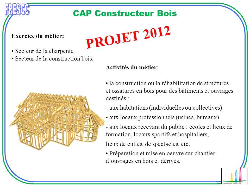 PROJET 2012 FRESCC CAP Constructeur Bois Réalisation D'escalier