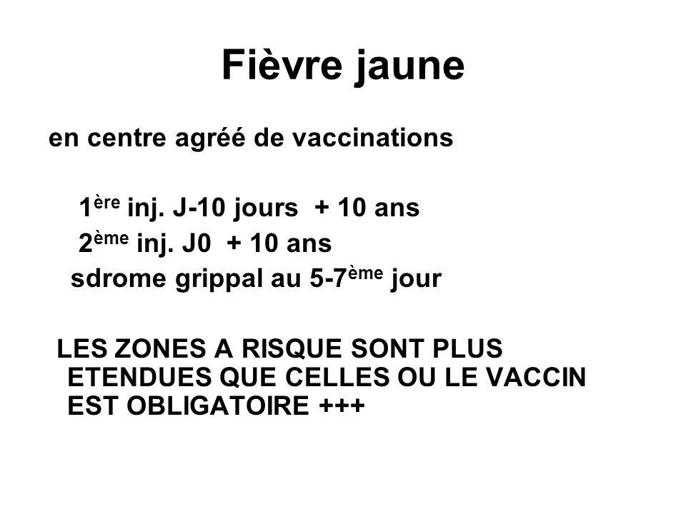 Fièvre jaune en centre agréé de vaccinations