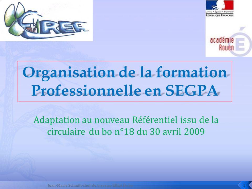Organisation de la formation Professionnelle en SEGPA
