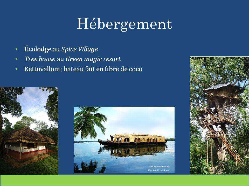Hébergement Écolodge au Spice Village Tree house au Green magic resort