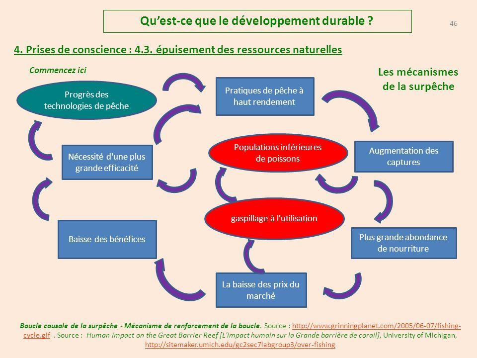 Qu'est-ce que le développement durable Les mécanismes de la surpêche