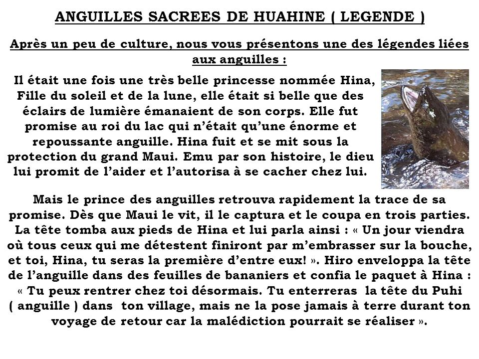 ANGUILLES SACREES DE HUAHINE ( LEGENDE )