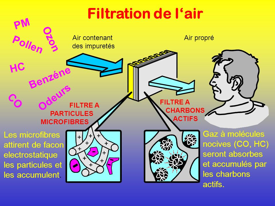 Filtration de l'air PM Ozon Pollen HC Benzéne Odeurs CO
