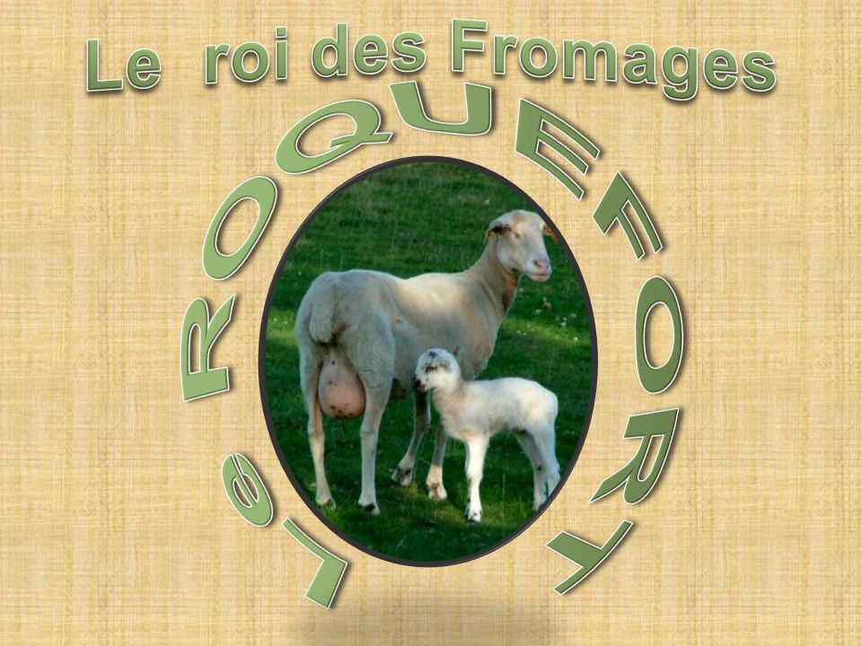 Le roi des Fromages Le ROQUEFORT
