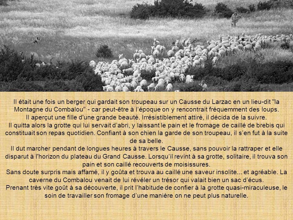 Il était une fois un berger qui gardait son troupeau sur un Causse du Larzac en un lieu-dit la Montagne du Combalou - car peut-être à l'époque on y rencontrait fréquemment des loups.