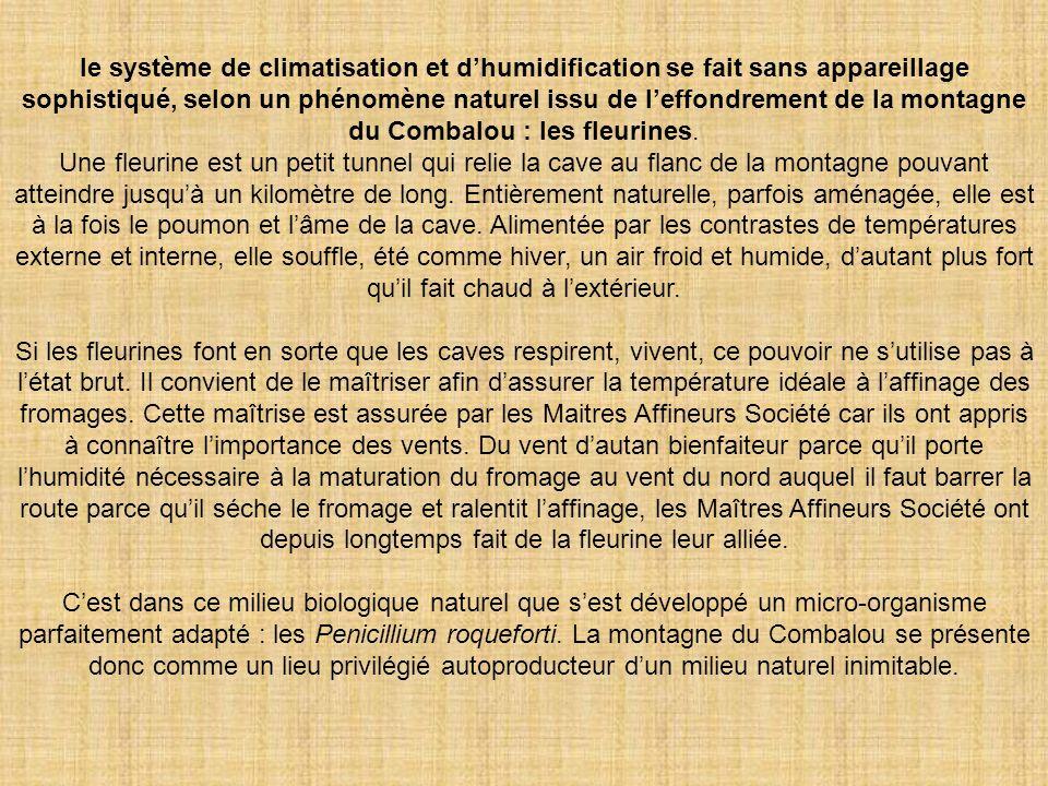 le système de climatisation et d'humidification se fait sans appareillage sophistiqué, selon un phénomène naturel issu de l'effondrement de la montagne du Combalou : les fleurines.