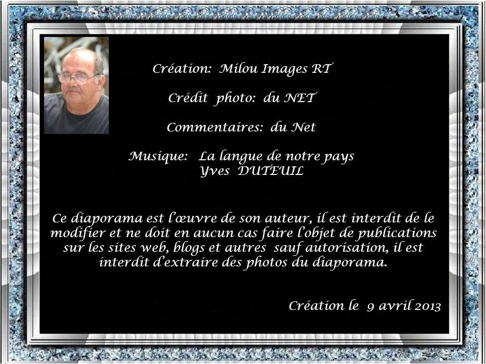 Création: Milou Images RT Crédit photo: du NET Commentaires: du Net