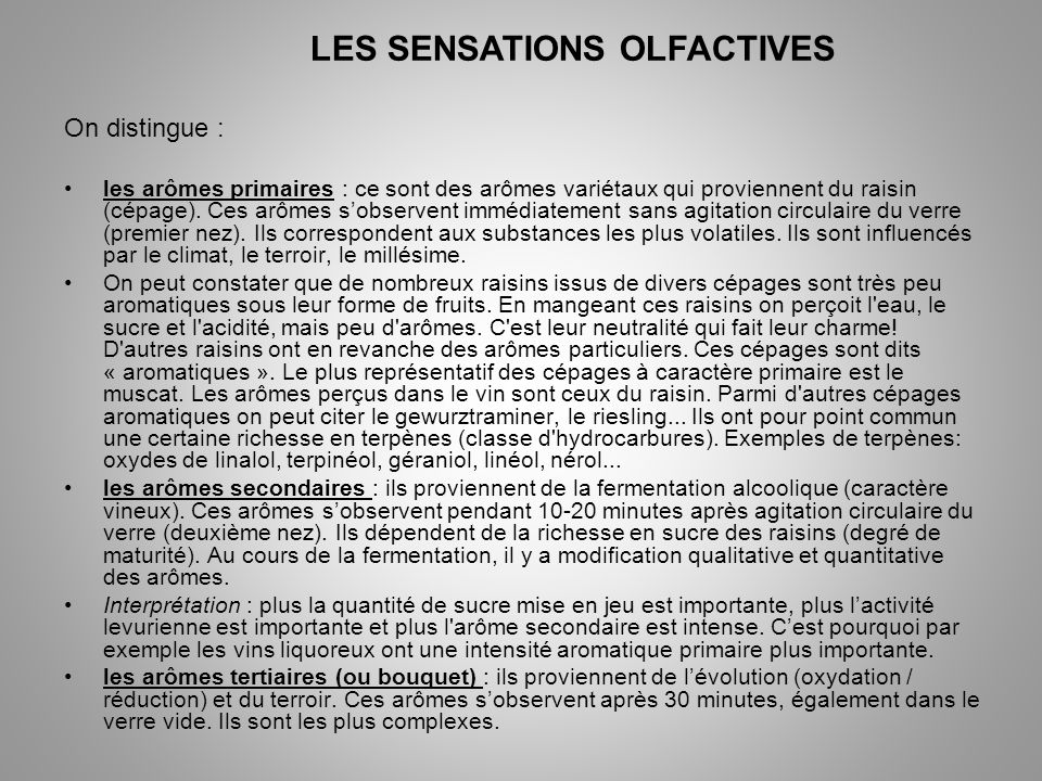 LES SENSATIONS OLFACTIVES
