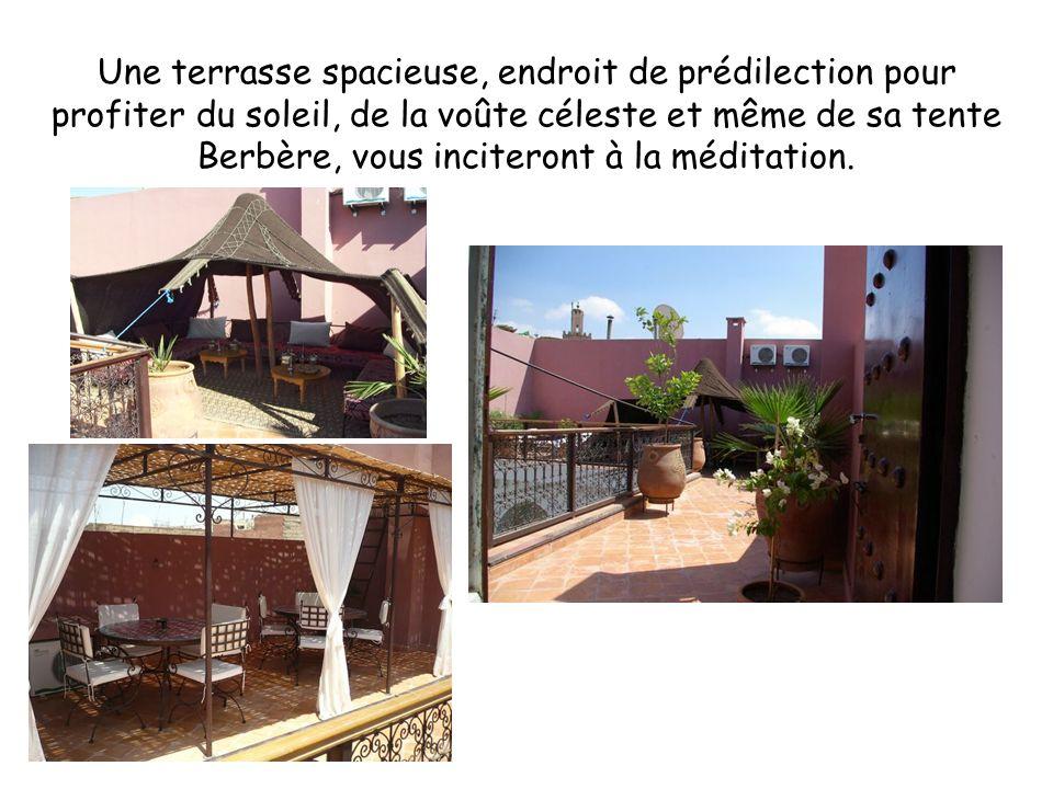 Une terrasse spacieuse, endroit de prédilection pour profiter du soleil, de la voûte céleste et même de sa tente Berbère, vous inciteront à la méditation.
