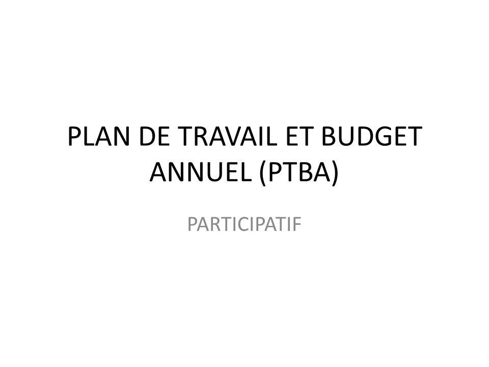 PLAN DE TRAVAIL ET BUDGET ANNUEL (PTBA)